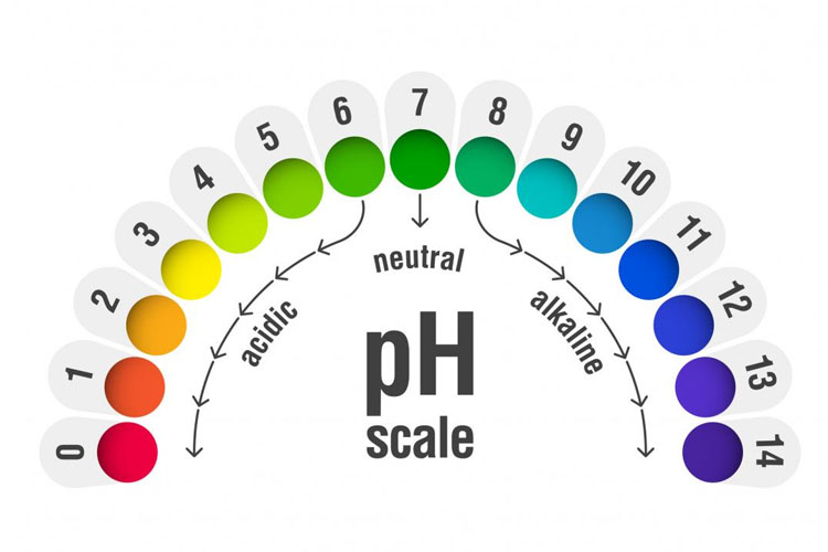 pH levels Become Balanced